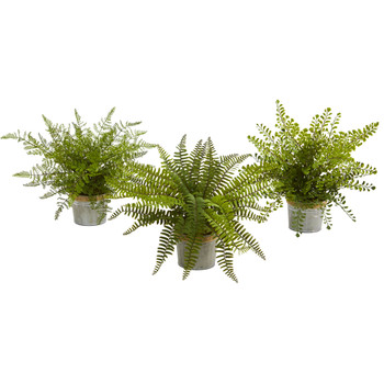 14 Assorted Ferns with Planter Artificial Plant Set of 3 - SKU #4222-S3