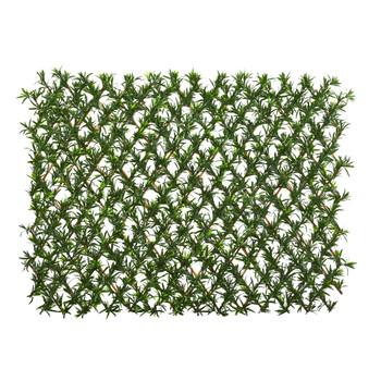 39 Podocarpus Expandable Fence UV Resistant Waterproof - SKU #4235