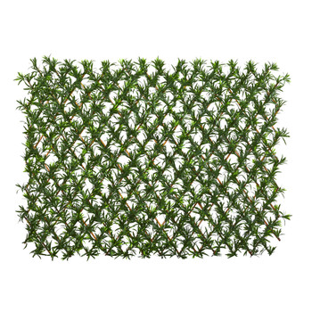 39 Podocarpus Expandable Fence UV Resistant Waterproof - SKU #4235