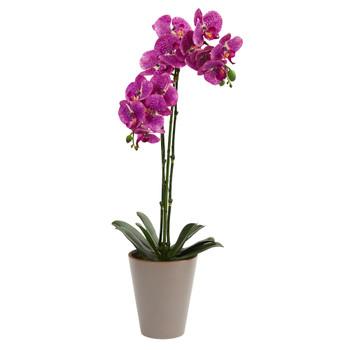 24 Speckled Phalaenopsis Orchid Artificial Arrangement - SKU #4246