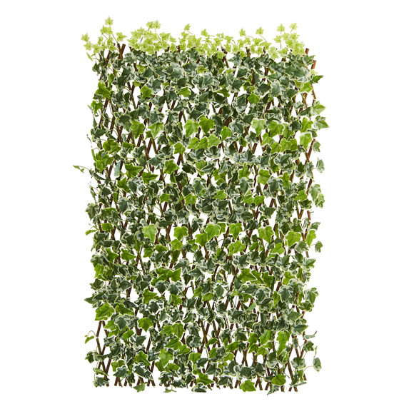39 English Ivy Expandable Fence UV Resistant Waterproof - SKU #4255 - 1