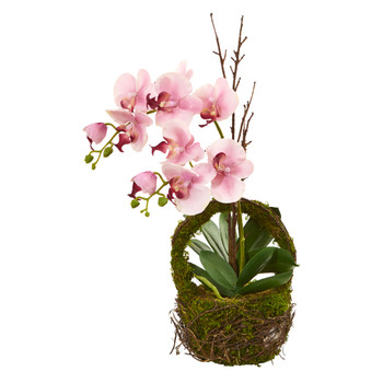 Phalaenopsis Orchid Artificial Arrangement in Twig Basket - SKU #4290