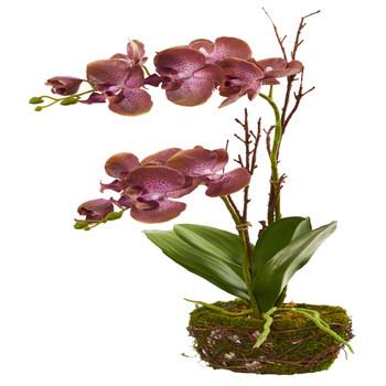 23 Chocolate Phalaenopsis Orchid Artificial Arrangement in Twig Basket - SKU #4291
