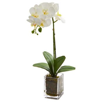 24 Orchid Phalaenopsis Artificial Arrangement in Vase - SKU #4309