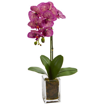 24 Orchid Phalaenopsis Artificial Arrangement in Vase - SKU #4309