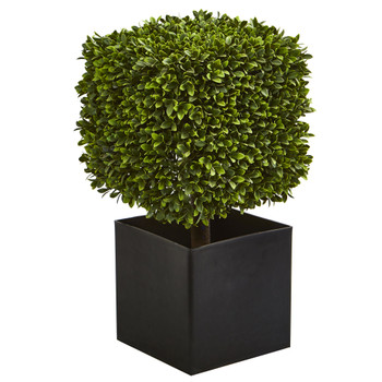 27 Boxwood Artificial Plant in Black Planter indoor/Outdoor - SKU #4349