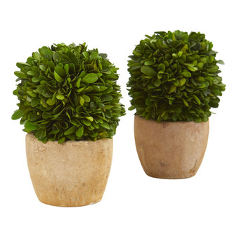 7 Boxwood Ball Preserved Plant in Decorative Planter Set of 2 - SKU #4367-S2