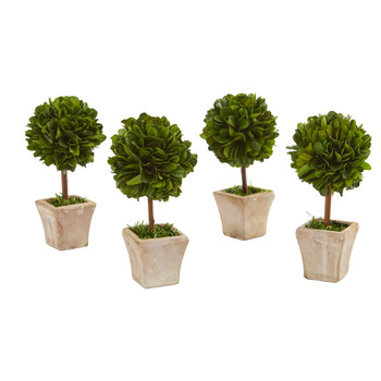 6 Boxwood Topiary Preserved Plant in Ceramic Planter Set of 4 - SKU #4371-S4