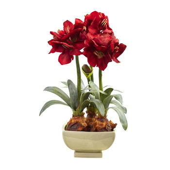 Amarylis Arrangement w/Vase - SKU #4536-RD