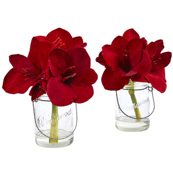 Amaryllis in Glass Vase Set of 2 - SKU #4547-S2
