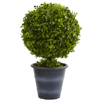 23 Boxwood Ball Topiary - SKU #4560
