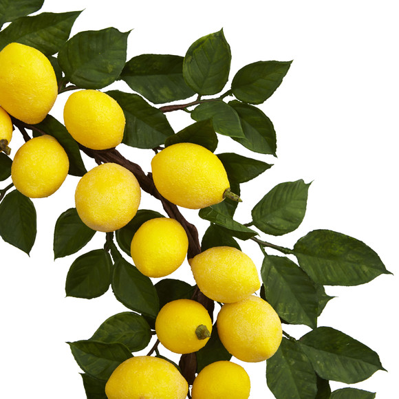 24 Lemon Wreath - SKU #4567 - 1