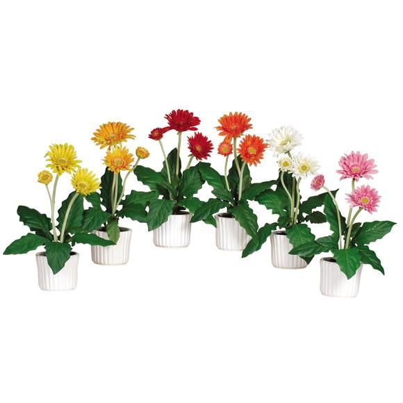 Gerber Daisy w/White Vase Set of 6 - SKU #4600