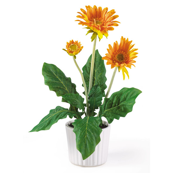 Gerber Daisy w/White Vase Set of 6 - SKU #4600 - 1