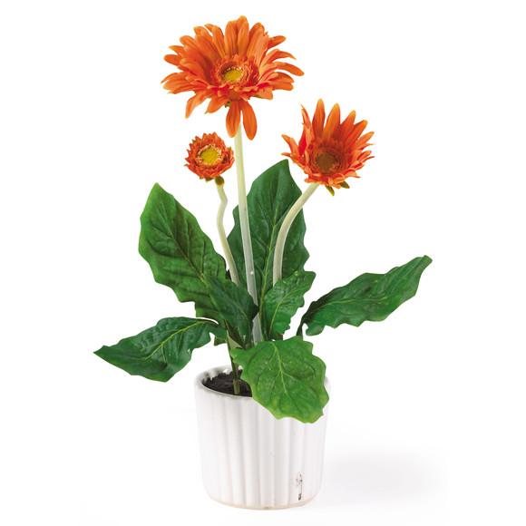 Gerber Daisy w/White Vase Set of 6 - SKU #4600 - 2