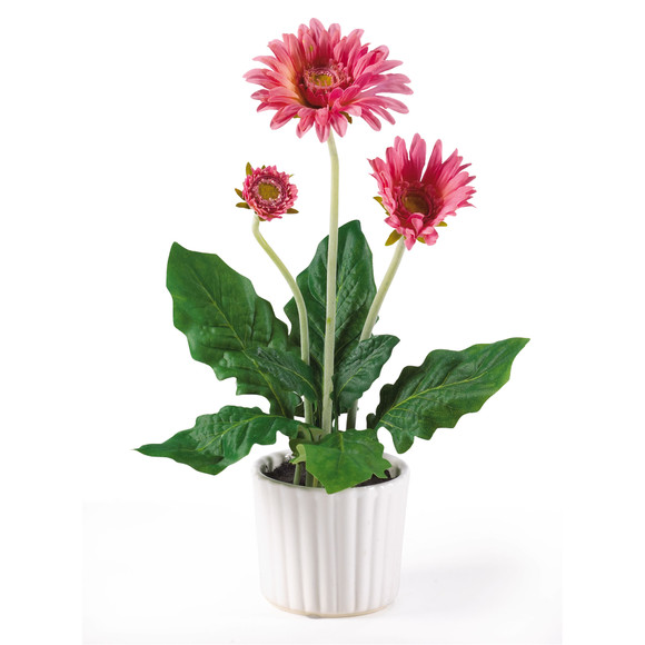 Gerber Daisy w/White Vase Set of 6 - SKU #4600 - 3