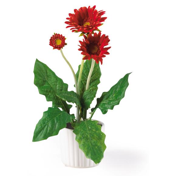Gerber Daisy w/White Vase Set of 6 - SKU #4600 - 4