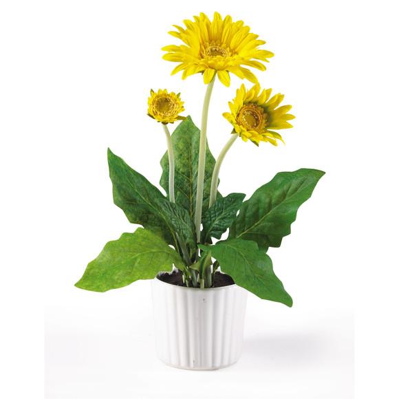 Gerber Daisy w/White Vase Set of 6 - SKU #4600 - 6