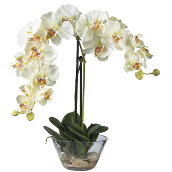 Phalaenopsis w/Glass Vase Silk Flower Arrangement - SKU #4643
