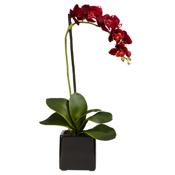 Phaleanopsis Orchid w/Black Vase Silk Arrangement Set of 2 - SKU #4757-S2 - 1