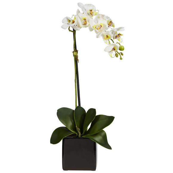 Phaleanopsis Orchid w/Black Vase Silk Arrangement Set of 2 - SKU #4757-S2 - 2