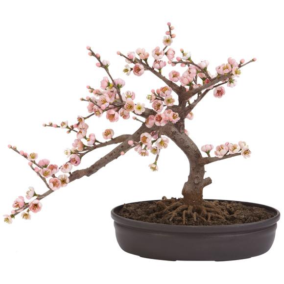 Cherry Blossom Bonsai Silk Tree - SKU #4764