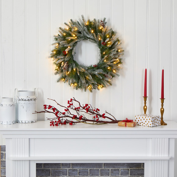 24 Snowed Artificial Christmas Wreath with 50 Warm White LED Lights and Pine Cones - SKU #4784 - 3