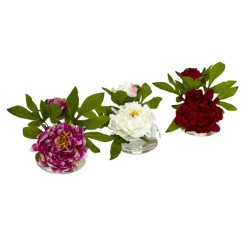 Peony w/Glass Vase Set of 3 - SKU #4789