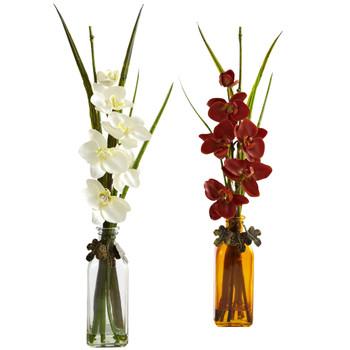 Phalaenopsis w/Colored Jar Set of 2 - SKU #4824-S2