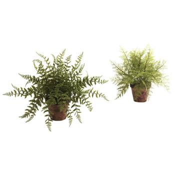 Fern w/Decorative Planter Set of 2 - SKU #4826-S2