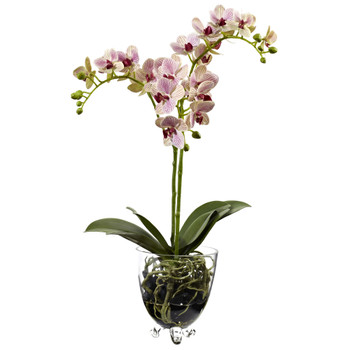 Raspberry Orchid Elegance Arrangement - SKU #4830
