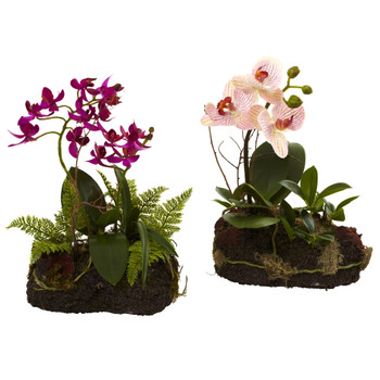 Orchid Island Set of 2 - SKU #4835-S2