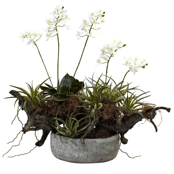 Orchid Succulent Garden w/Driftwood Decorative Vase - SKU #4839