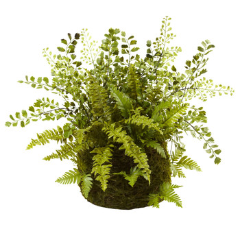 Mixed Fern w/Twig and Moss Basket - SKU #4846