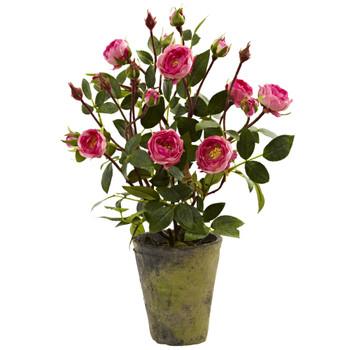 French Rose Garden - SKU #4853