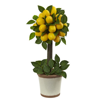 Lemon Ball Topiary Arrangement - SKU #4865
