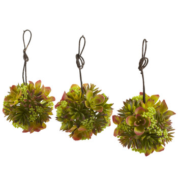 5 Mixed Succulent Hanging Ball Set of 3 - SKU #4958-S3