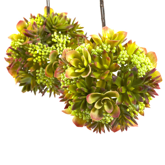 7 Mixed Succulent Hanging Spheres Set of 2 - SKU #4959-S2 - 1