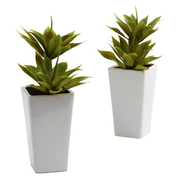 Double Mini Agave w/Planter Set of 2 - SKU #4971-S2