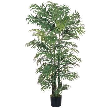 6 Areca Silk Palm Tree - SKU #5002