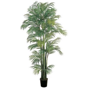 7 Areca Silk Palm Tree - SKU #5003