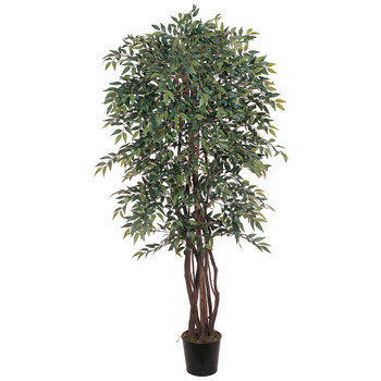 6 Smilax Silk Tree - SKU #5020