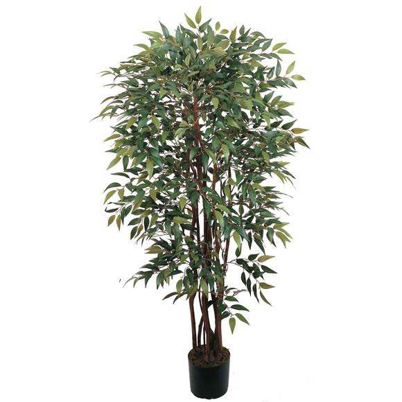 4 Similax Silk Tree - SKU #5081