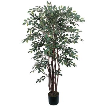 4 Ruscus Silk Tree - SKU #5082