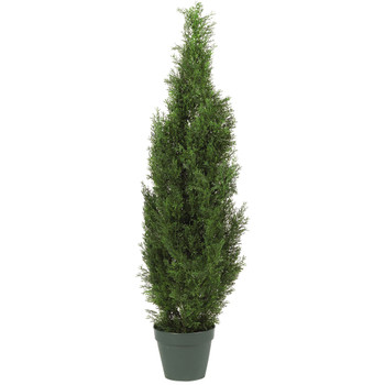 4 Cedar Tree Silk Tree In-door/Out-door - SKU #5172
