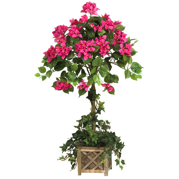 Bougainvillea Topiary w/Wood Box - SKU #5227