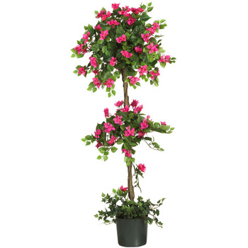 5 Mini Bougainvillea Topiary - SKU #5228