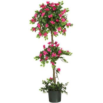5 Mini Bougainvillea Topiary - SKU #5228