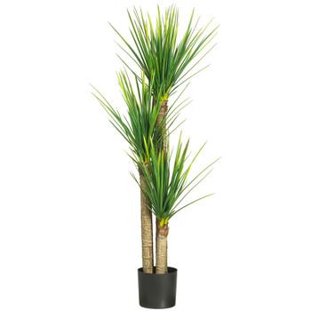 58.5 Yucca Silk Tree - SKU #5237