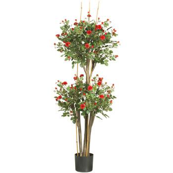 5 Mini Rose Silk Tree - SKU #5238